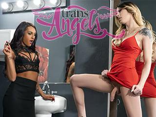 Trans Angels