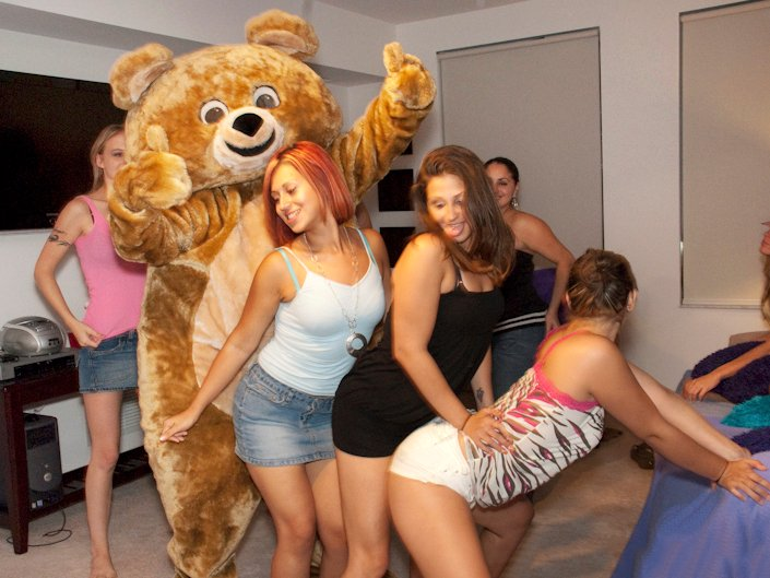 Dancing cock the bear in the house